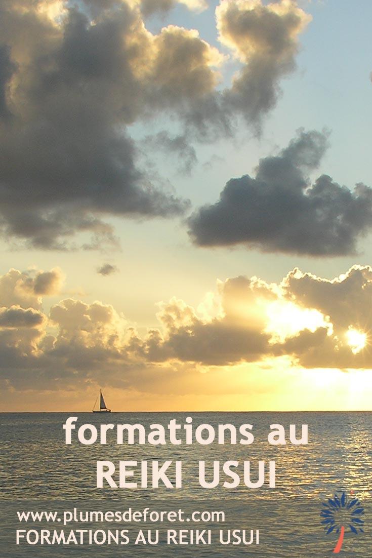 Formations Reiki Usui