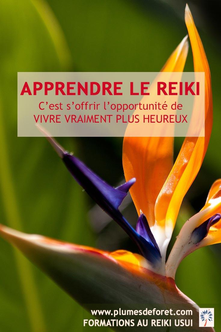 Pour trouver plus de bonheur intérieur, apprendre le reiki avec Plumes de Foret, maitre enseignant de Reiki Usui