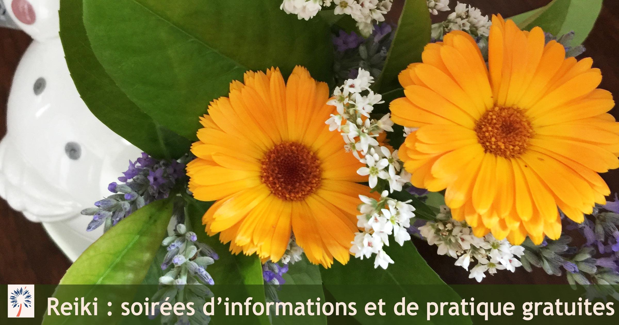 Soirées d'informations gratuites sur le Reiki, à Belfort, Montbeliard, Franche-Comte, Alsace
