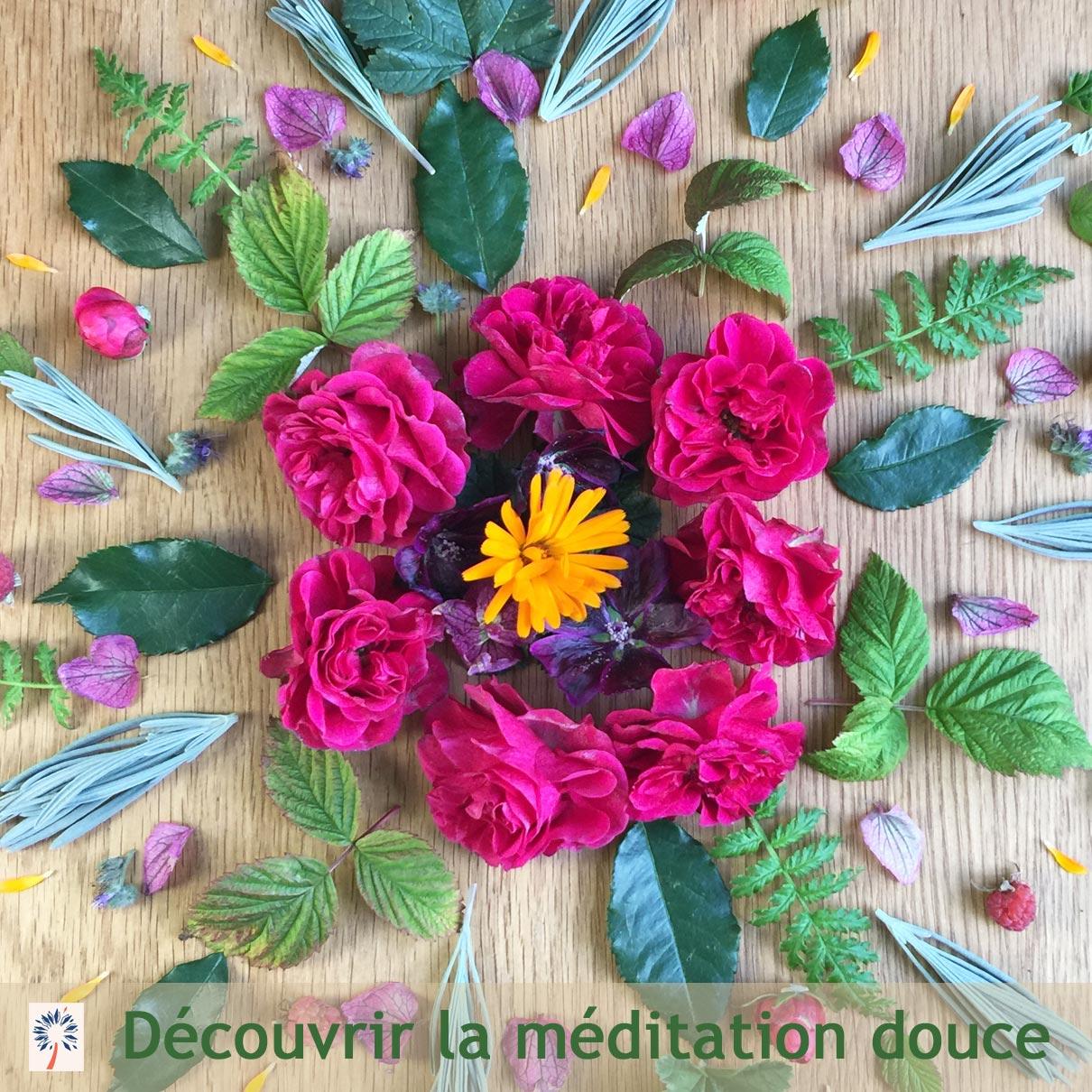 Des cours de méditation à Belfort en Franche-Comté