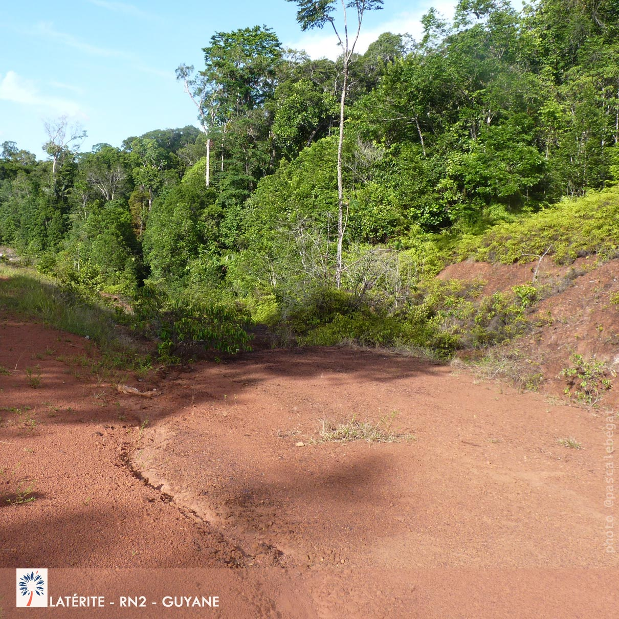 Latérite en Amazonie