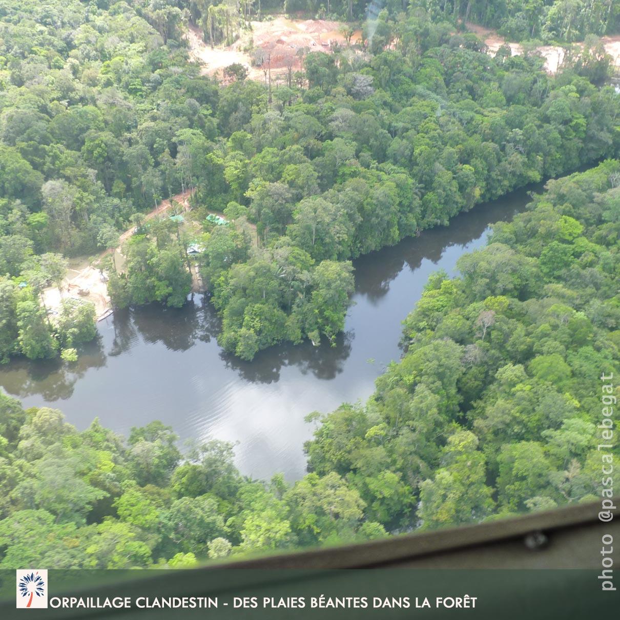 orpaillage forêt amazonienne