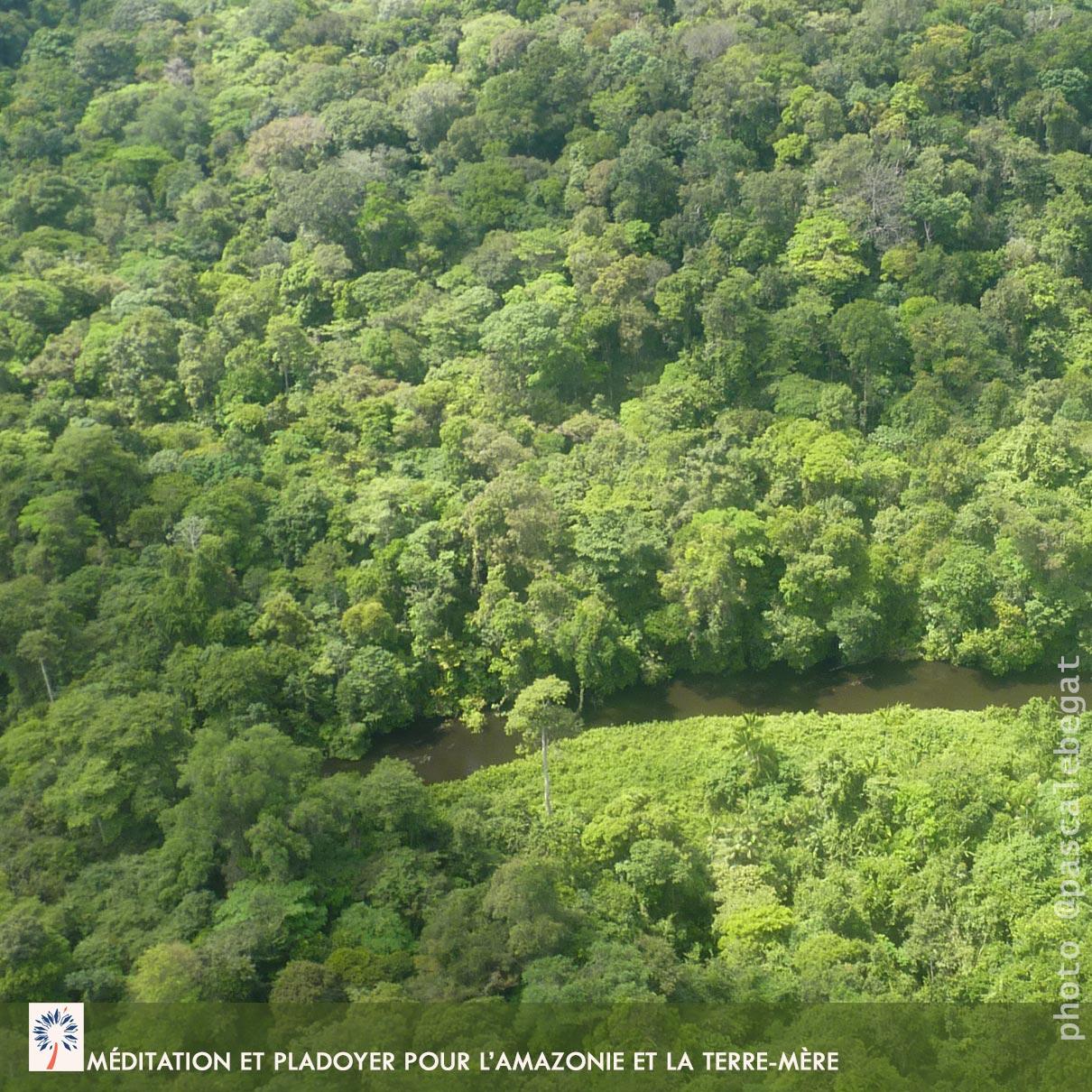 Comment méditer Amazonie feu