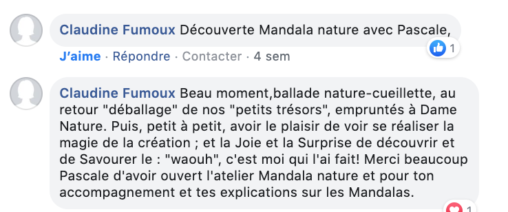 Mandala nature Plumes