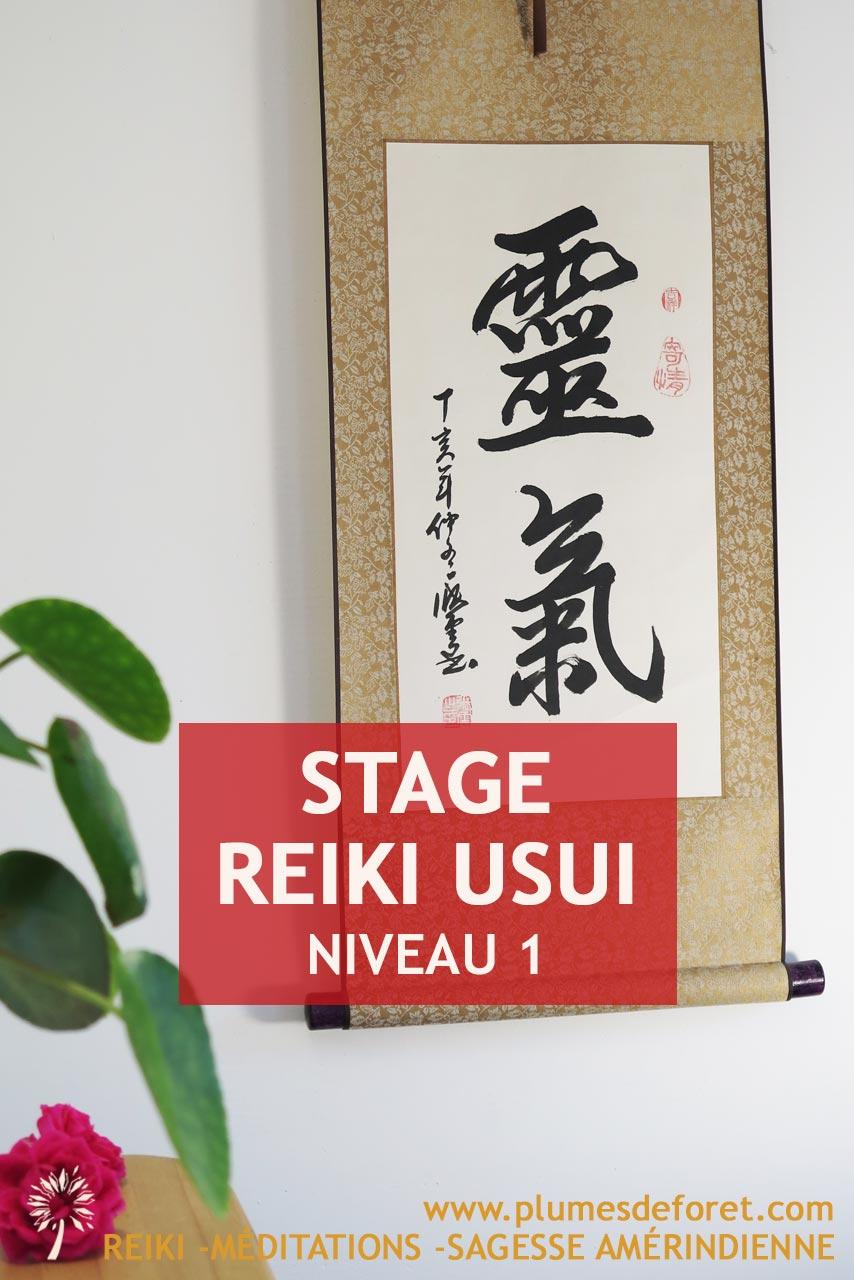 reiki-niveau-1