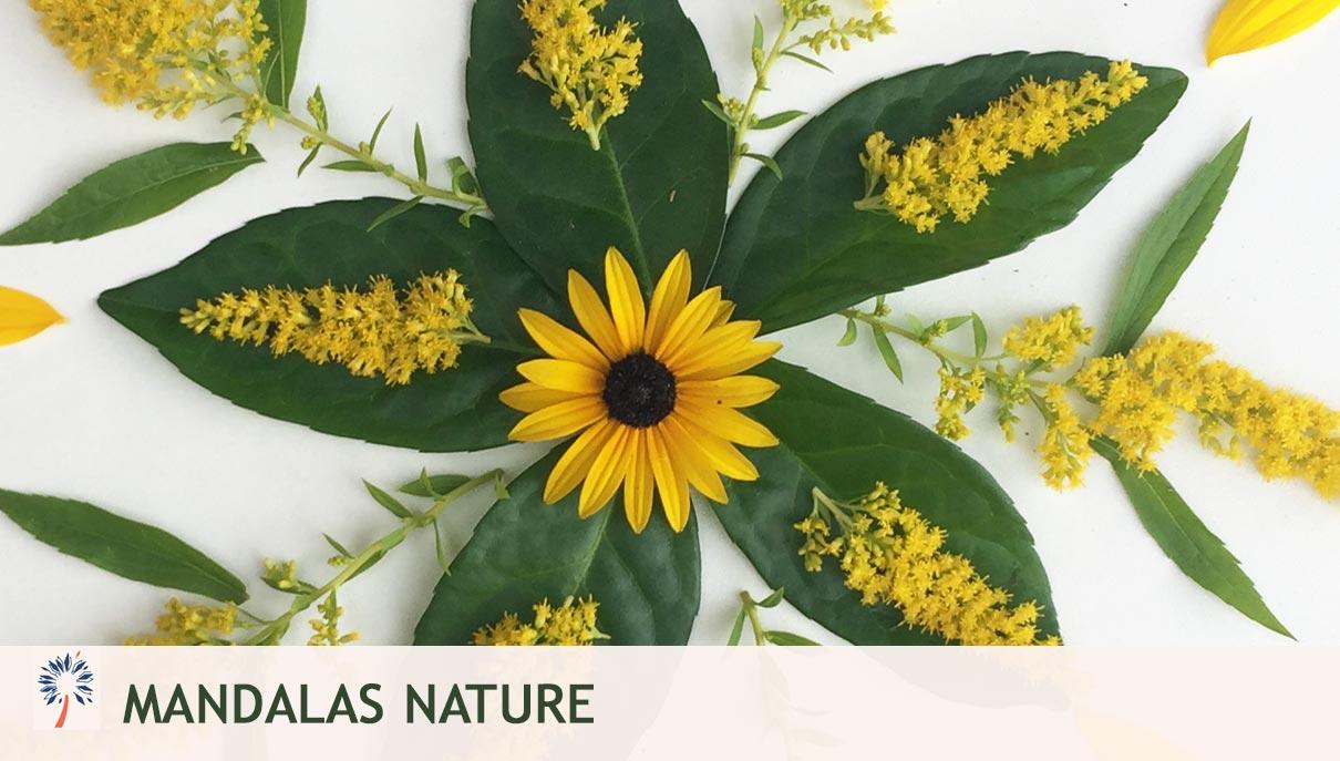 comment faire mandala naturel