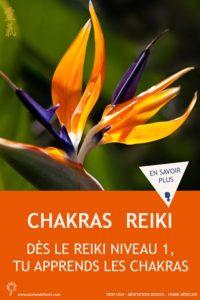 chakras -reiki