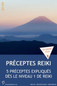 Préceptes Reiki