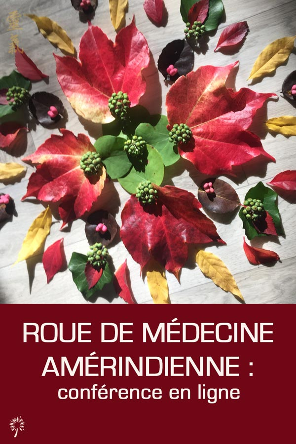 webinaire roue de médecine